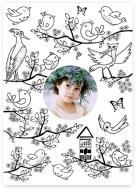 Poster, Carte de colorat- Păsări, 30x40 cm