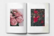 Fotocaiet Catalogul de plante, 20x30 cm